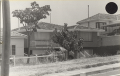 FSPS Ashburton Terrace, No 19, 10-2-A, 1978.png