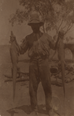 Mowering with two goannas, cropped.png