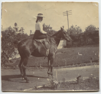 Dorothy D riding a horse (full).png