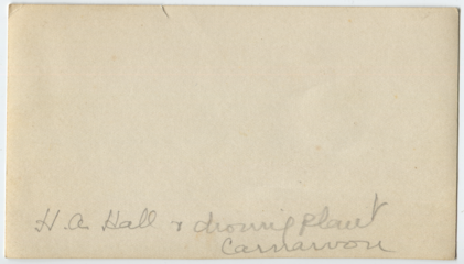 Aubrey Hall and droving plant, Carnarvon, back.png